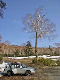 2009.shiga-1b.jpg