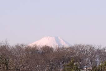 fujisan-3.jpg